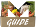 Matkasse Guide